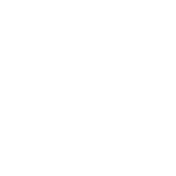 https://demo.wdsgallery.com/wp-content/uploads/2020/08/ssl-badge-256.png